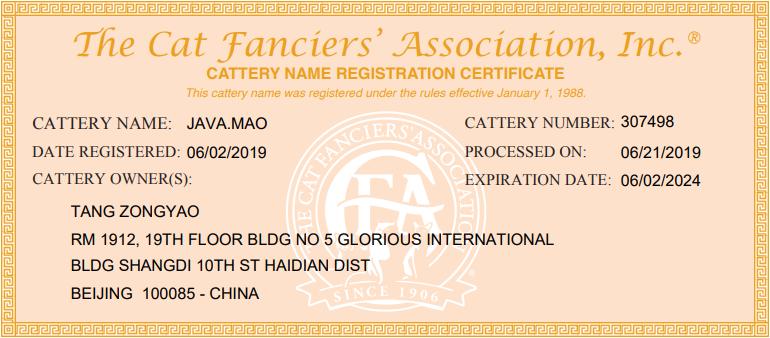 猫舍CFA证书.png